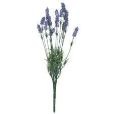 6PL0183-levandula-umele-kvety