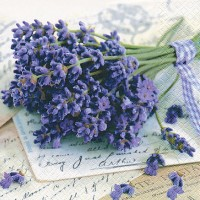 1001431- LAVENDER_GREETINGS