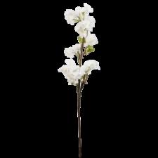 6PL0171W-rozkvitnuta-vetvicka-biela